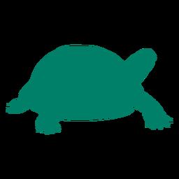 Silhueta de tartaruga ambulante