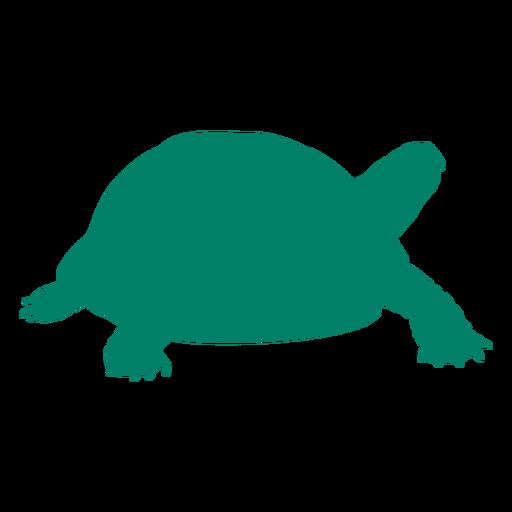 Walking tortoise silhouette