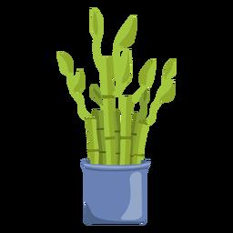 Planta de la suerte de bambú establece ilustración azul