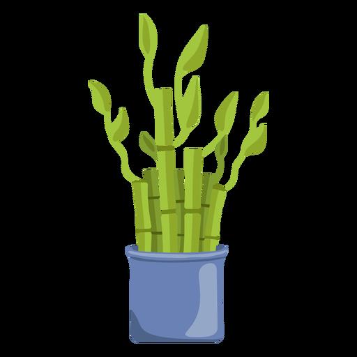 Bamboo lucky plant set blue illustration