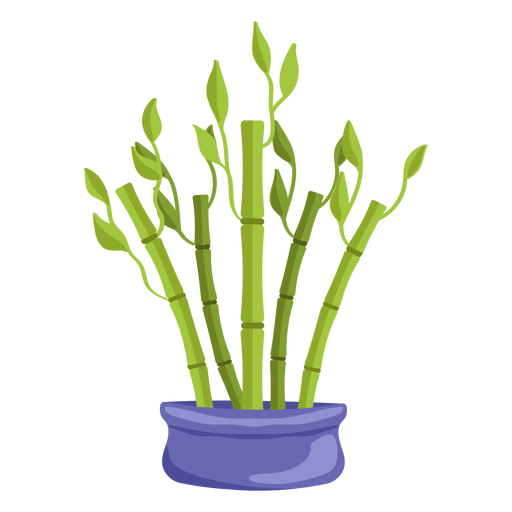 Bamboo lucky plant set purple illustration Transparent PNG