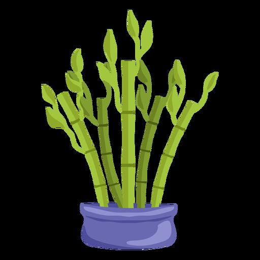 Bamboo lucky plant set purple illustration