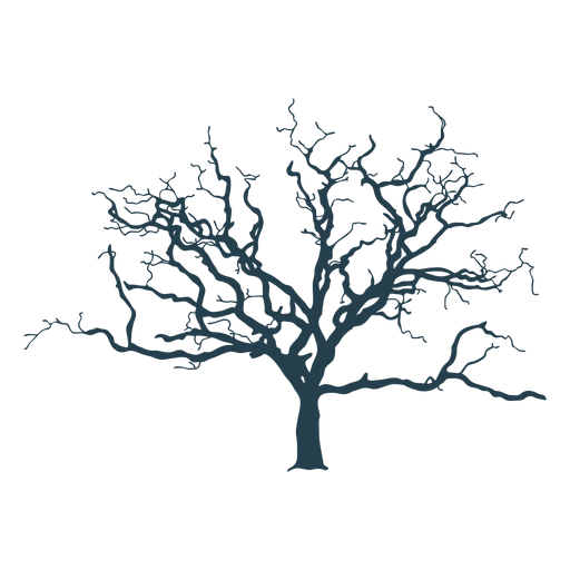 Bare tree complex stroke Transparent PNG
