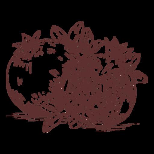 Frutas granada fruta en rodajas dibujado a mano