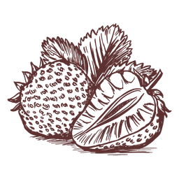 Dibujado a mano frutas fresa frutas