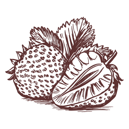 Fruits strawberry fruit hand drawn Transparent PNG