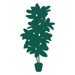 Planta simple silueta de hojas gruesas