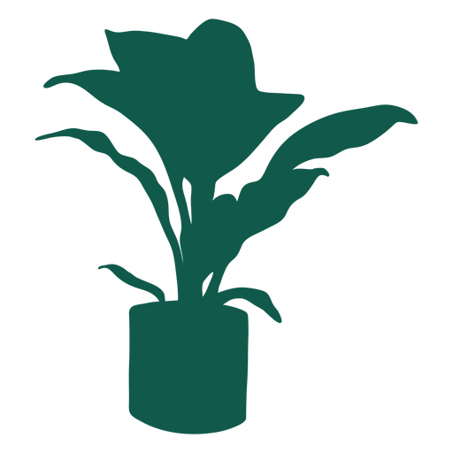 Plant simple thick leaves long leaves silhouette