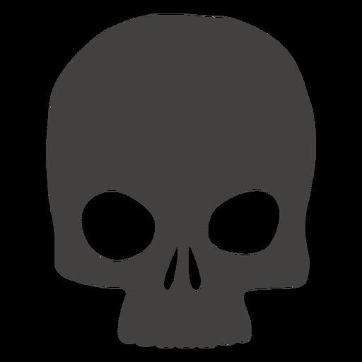 Skull human
