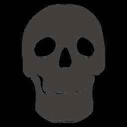 Cráneo humano mandíbula ancha