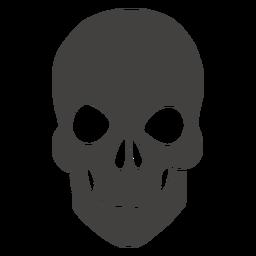 Cráneo humano barbilla corta