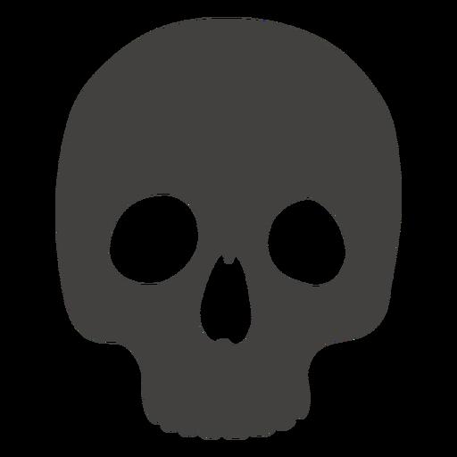 Cráneo humano sin mandíbula
