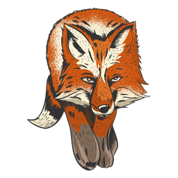 Awesome fox illustration