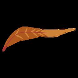 Pluma de color marrón boho
