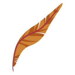 Curvy brown feather