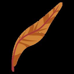 Pluma marrón con curvas