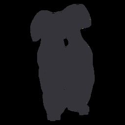 Cute koala silhouette