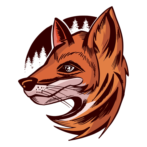 Fox head side view colored