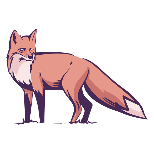 Fox side view colored