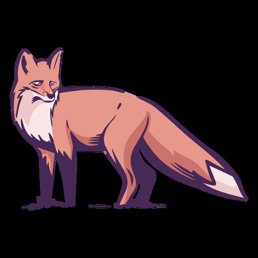 Vista lateral de zorro de color