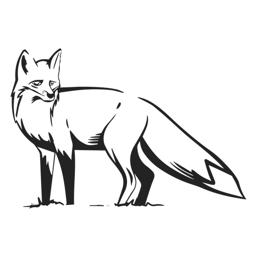 Fox Side View Drawn Transparent Png Svg Vector File