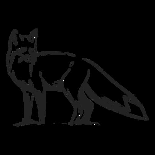 Fox side view drawn