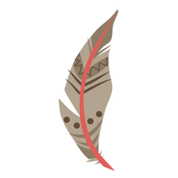 Patterned brown feather