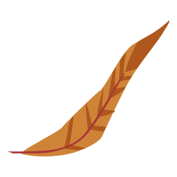 Simple brown colored feather