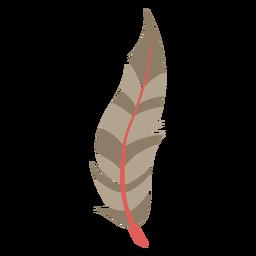 Pluma marrón simple