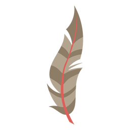 Simple brown feather