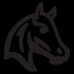 Curso de cavalo simples