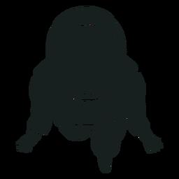Vista superior de la silueta del astronauta