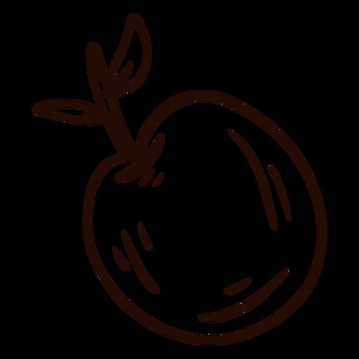 Apple fruit hand drawn