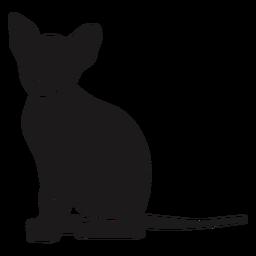 Calm cat sitting silhouette