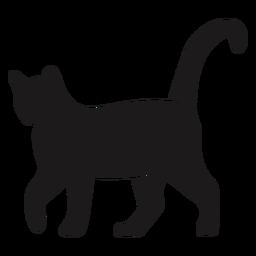 Calma gato andando silhueta