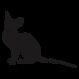 Katze langen Schwanz Silhouette