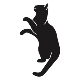 Gato olhando a silhueta animal