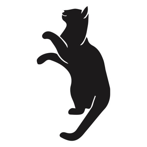 Cat looking up animal silhouette