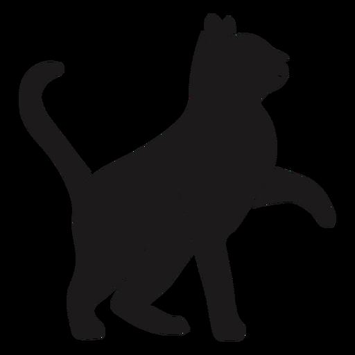 Gato mirando hacia arriba silueta gato