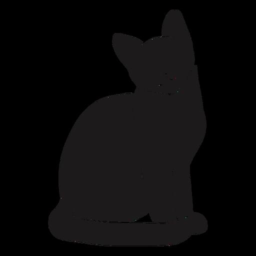 Cat sitting silhouette cat