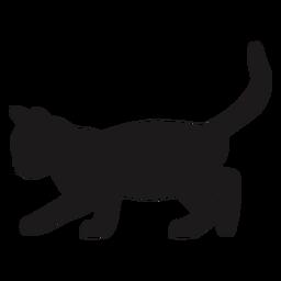 Katze, die Silhouette verfolgt