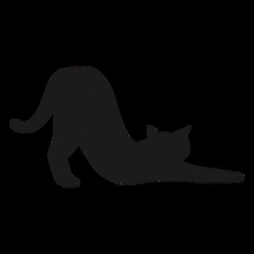 Gato estirando silueta animal