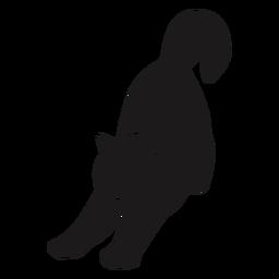 Katze, die Silhouette streckt