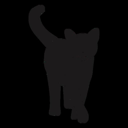 Gato caminando silueta animal