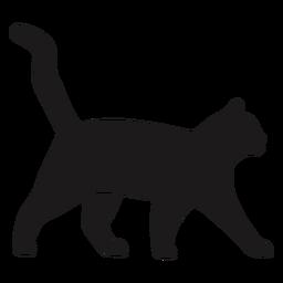 Gato andando silhueta gato