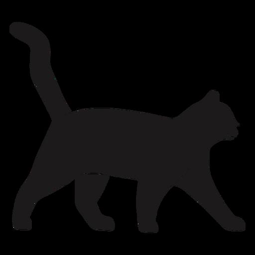 Cat walking silhouette cat