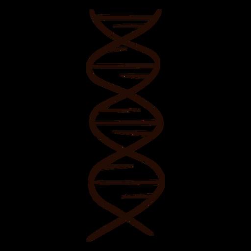 Dibujado a mano genes de adn