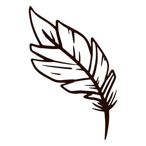 Dibujado a mano pluma pluma