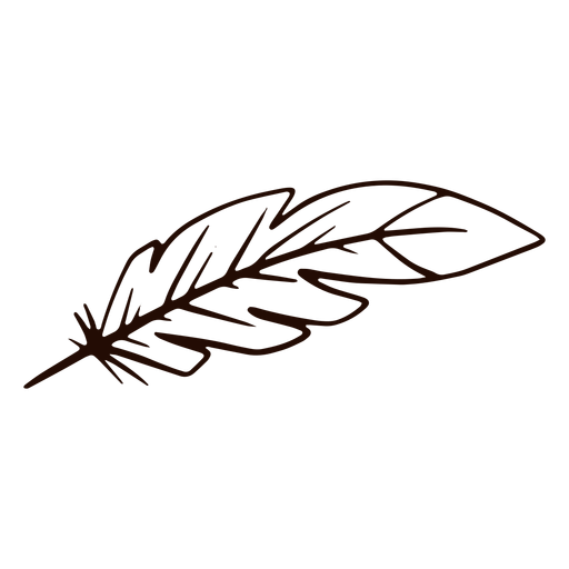 Quill pen hand drawn