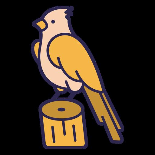 Bird in trunk flat
